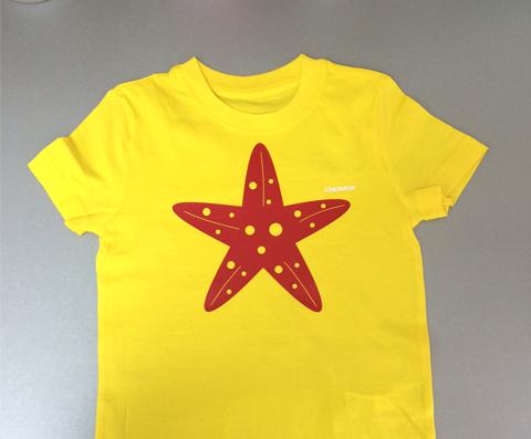 29106b7ed47ee Печать на футболках срочно: сделаем принты, надписи, фото в Красноярске